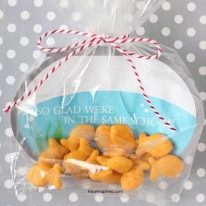 Goldfish à offrir pour la st valentin